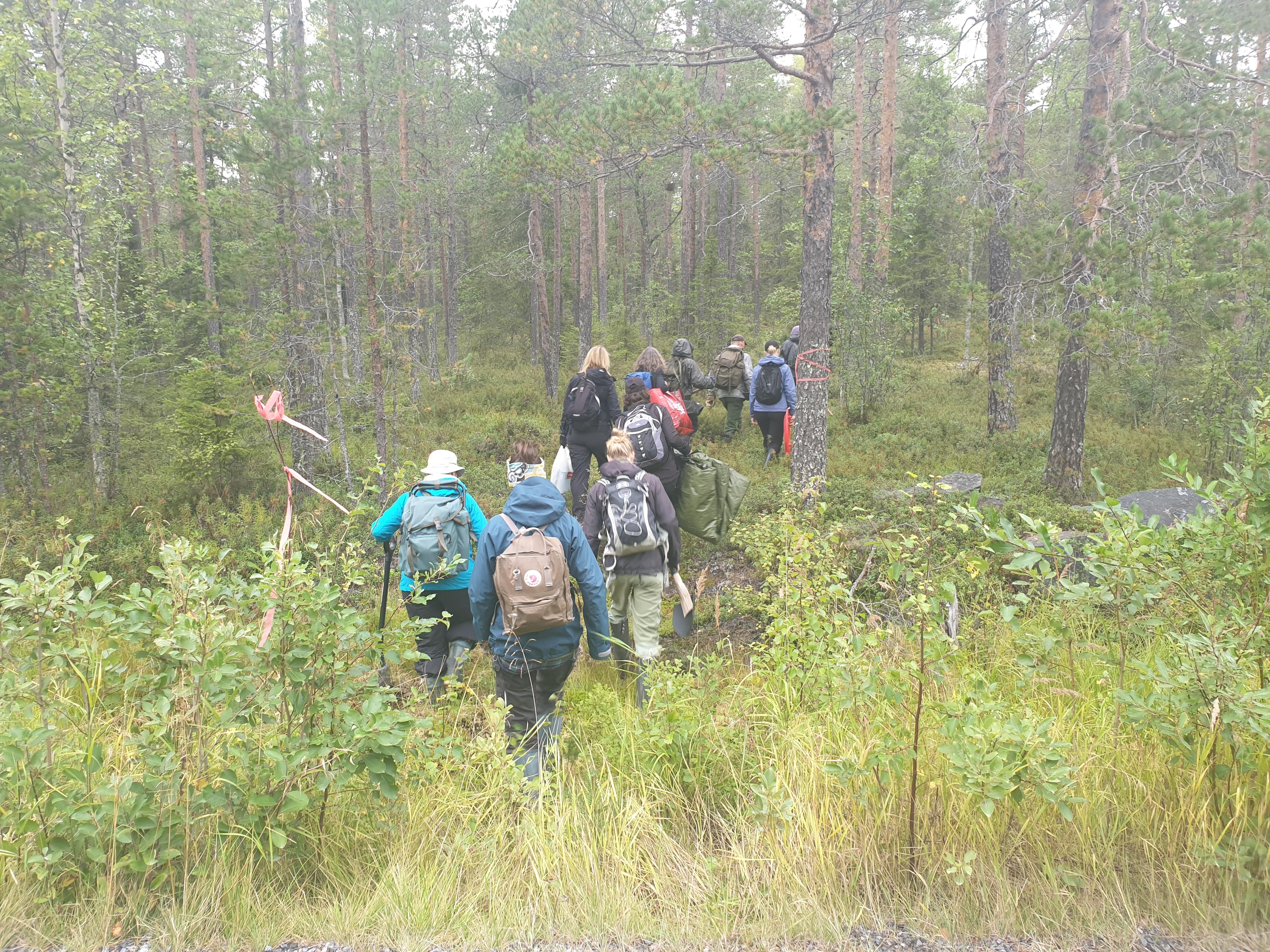 Johan Kristoffersson från Luleå kommun guidade de entusiastiska deltagarna de ca 1000 m ut till fält på Hertsön.