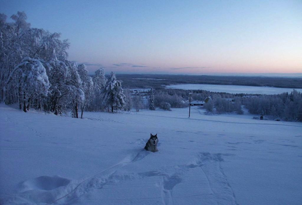 Vintervy från byn Glommersträsk