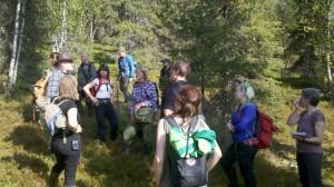 Skogsvänner inventerar på Mertainen augusti 2013