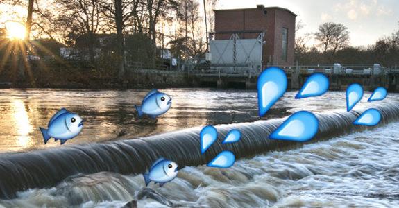 vattenkraft-575x300