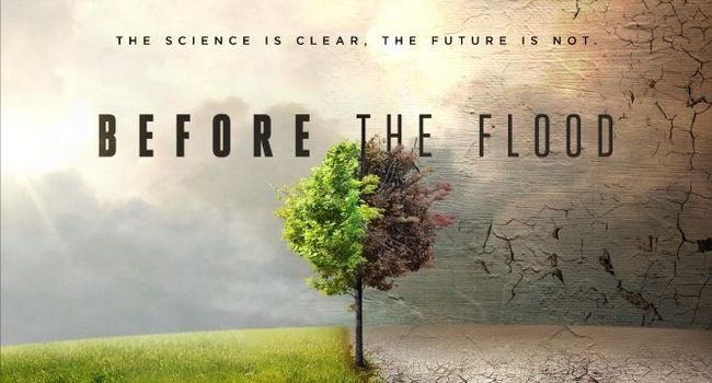 before-the-floo-392d4104500-original